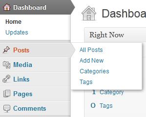 Flyout menu WordPress