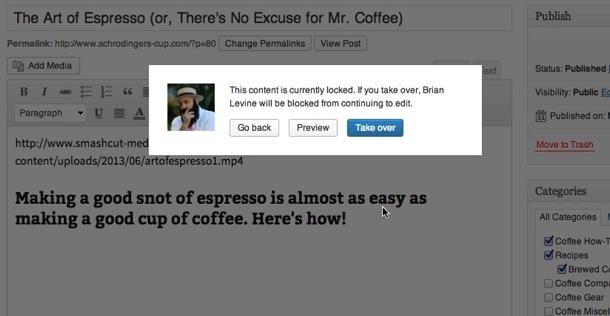 Berichtvergrendeling WordPress