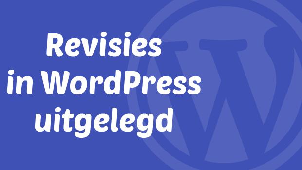 Revisies in WordPress uitgelegd