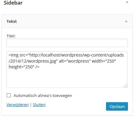 WordPress widget opslaan