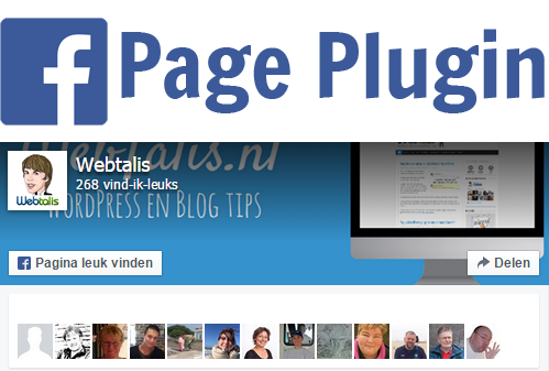 Facebook Page Plugin box