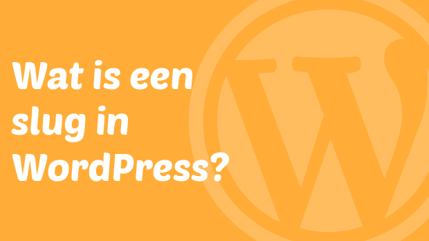 Wat is een slug in WordPress?