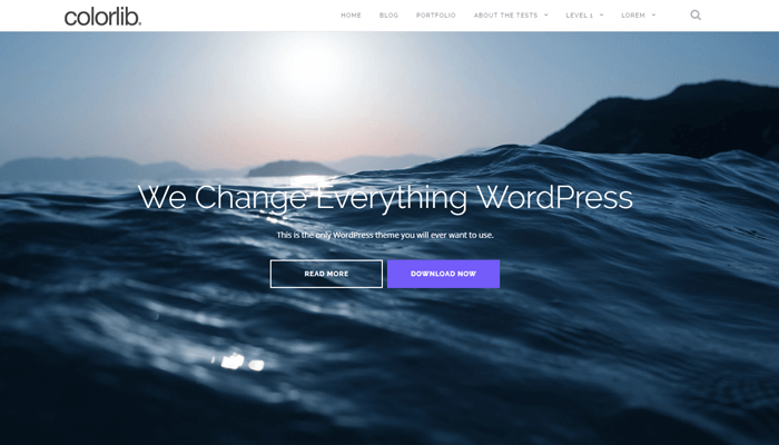 Shapely WordPress Thema