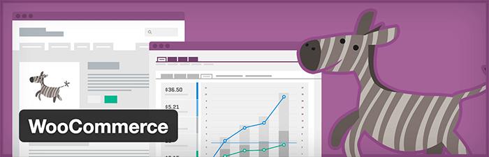 WooCommerce plugin voor een WordPress webshop