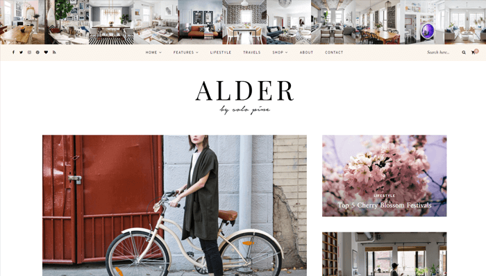 Alder WordPress Thema