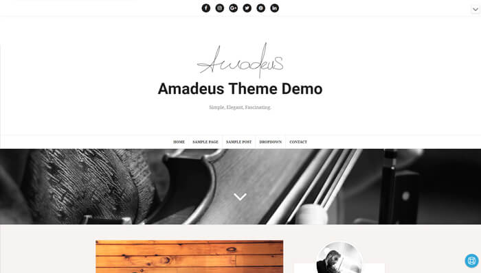 Amadeus WordPress Thema