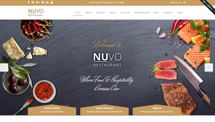 NUVO WordPress Thema