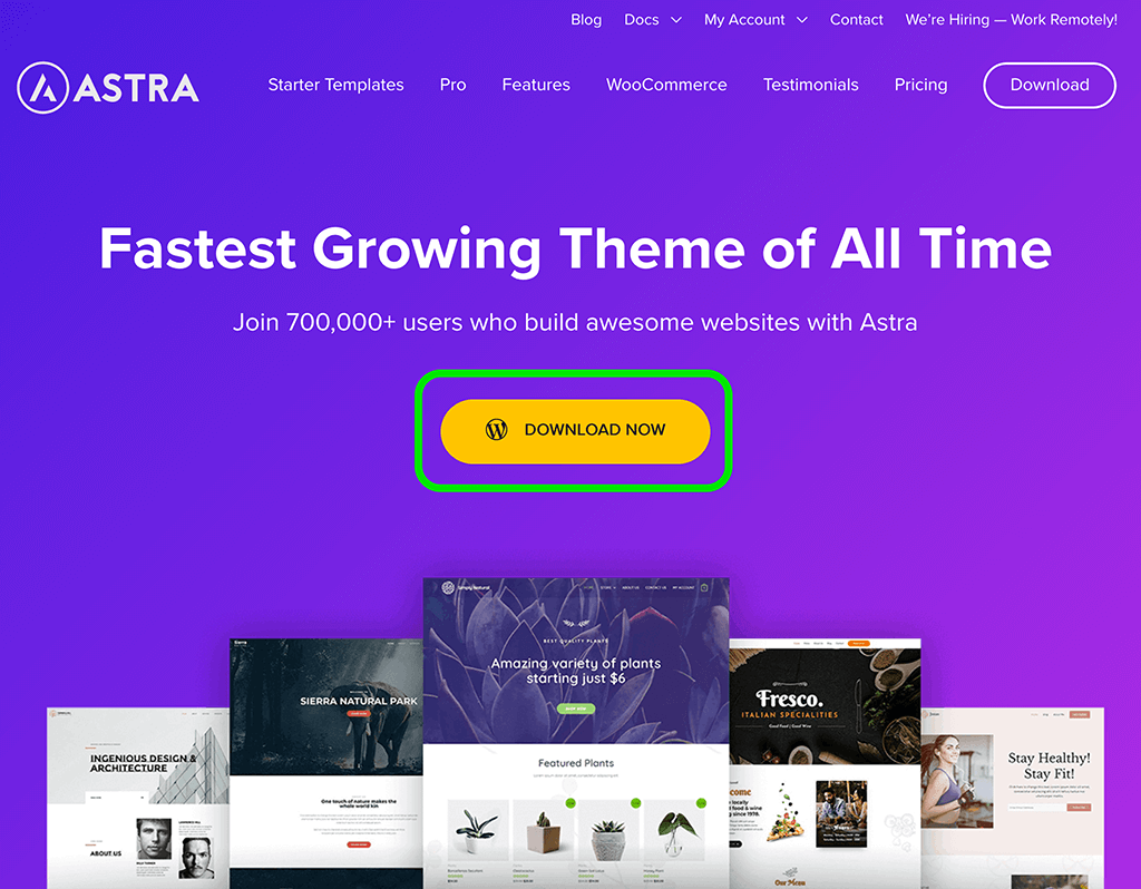 Astra thema website