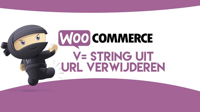 v= string uit WordPress URL verwijderen