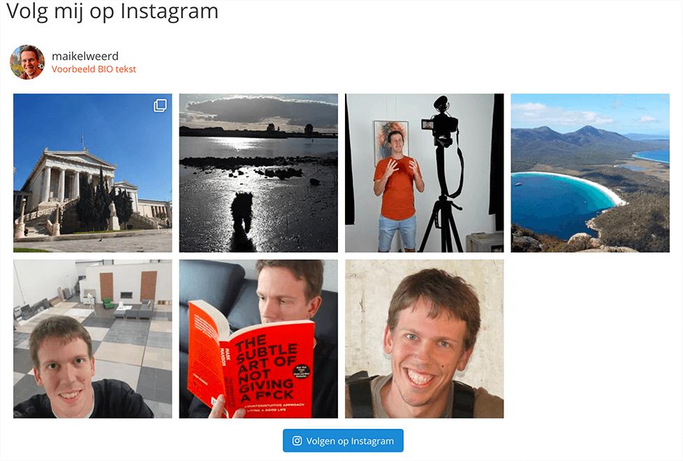Voorbeeld Instagram feed
